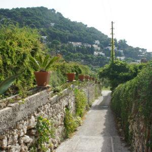 Unterwegs in Capri